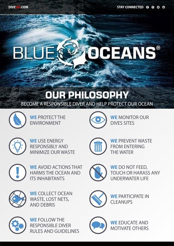 Blue Oceans image